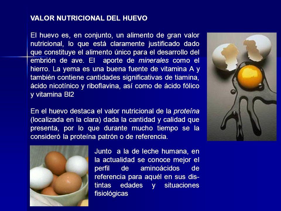 VALOR NUTRICIONAL DEL HUEVO El huevo es, en conjunto, un alimento de gran valor nutricional, lo que está claramente justificado dado que constituye el