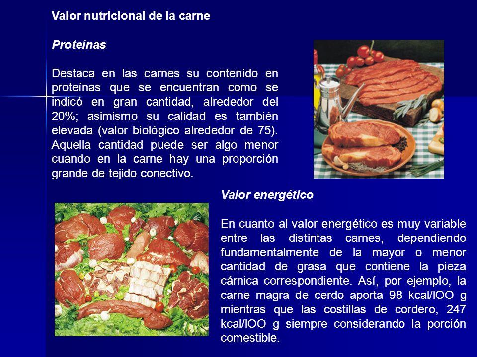 Valor nutricional de la carne Proteínas Destaca en las carnes su contenido en proteínas que se encuentran como se indicó en gran cantidad, alrededor d