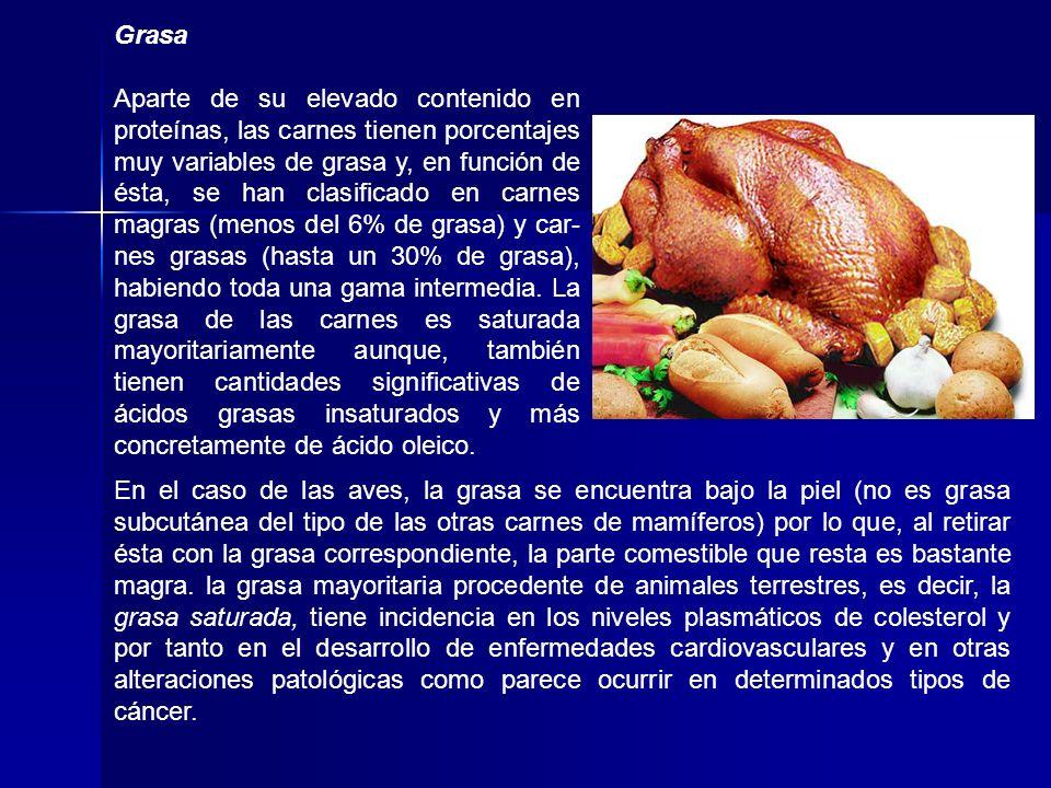 Grasa Aparte de su elevado contenido en proteínas, las carnes tienen porcentajes muy variables de grasa y, en función de ésta, se han clasificado en c