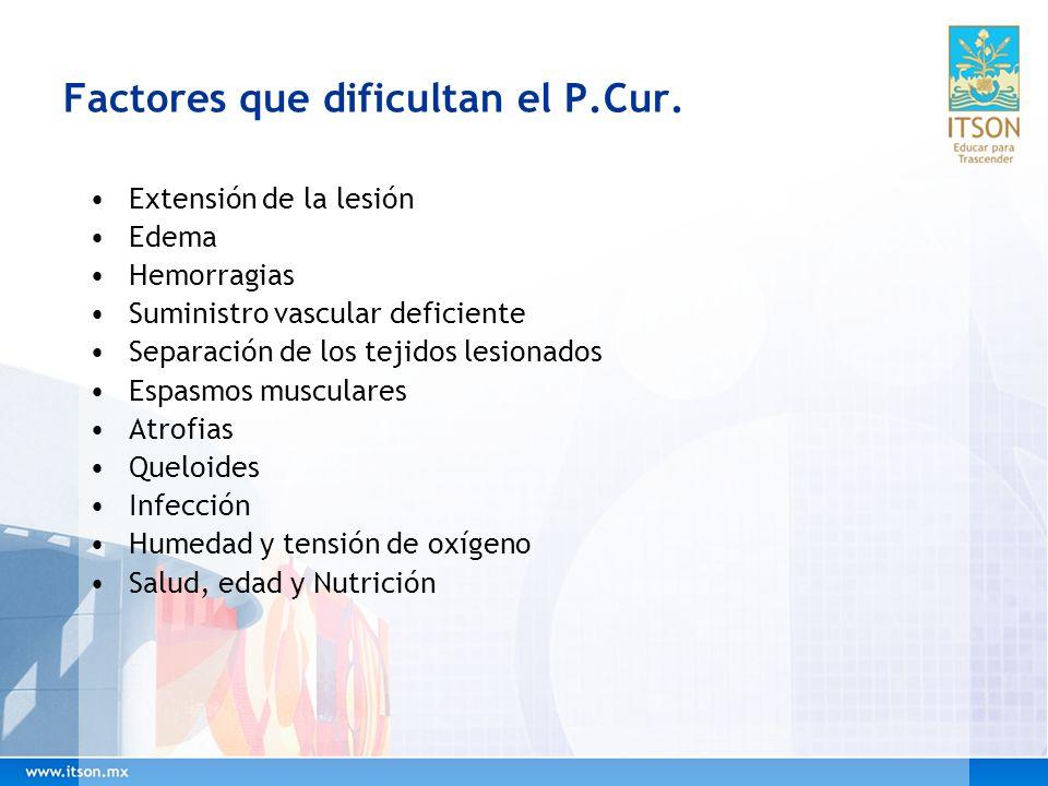 Factores que dificultan el P.Cur. Extensión de la lesión Edema Hemorragias Suministro vascular deficiente Separación de los tejidos lesionados Espasmo