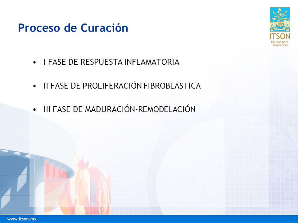 Proceso de Curación I FASE DE RESPUESTA INFLAMATORIA II FASE DE PROLIFERACIÓN FIBROBLASTICA III FASE DE MADURACIÓN-REMODELACIÓN