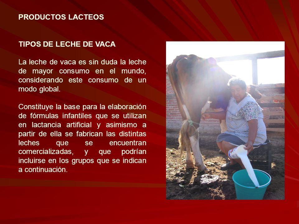 PRODUCTOS LACTEOS TIPOS DE LECHE DE VACA La leche de vaca es sin duda la leche de mayor consumo en el mundo, considerando este consumo de un modo glob