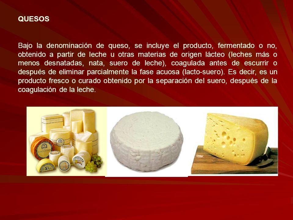 QUESOS Bajo la denominación de queso, se incluye el producto, fermentado o no, obtenido a partir de leche u otras materias de origen lácteo (leches má