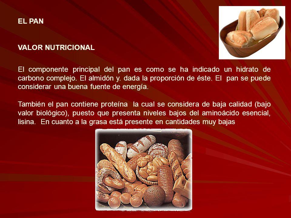 EL PAN VALOR NUTRICIONAL El componente principal del pan es como se ha indicado un hidrato de carbono complejo. El almidón y. dada la proporción de és