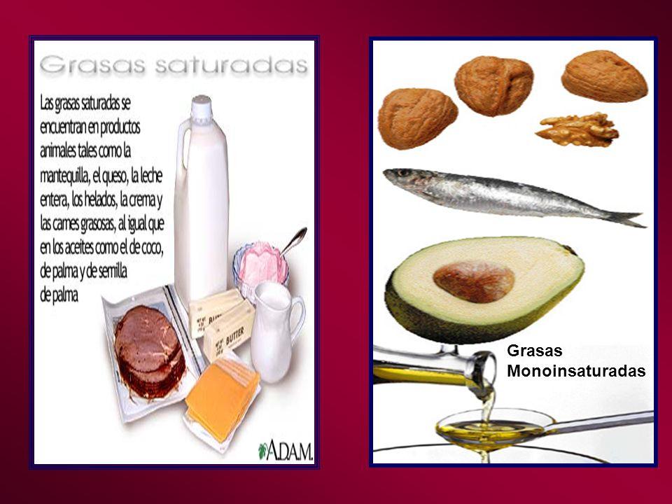 BIBLIOGRAFIA Williams M.(2004) Nutrición para la salud, la actividad física y el deporte.