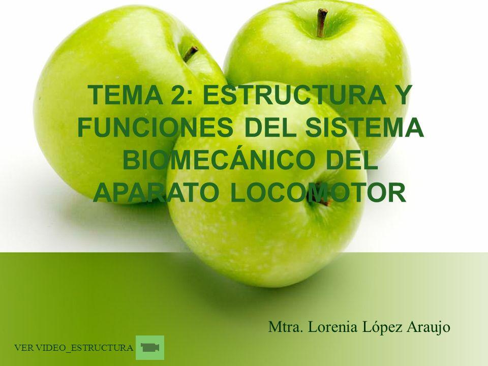 TEMA 2: ESTRUCTURA Y FUNCIONES DEL SISTEMA BIOMECÁNICO DEL APARATO LOCOMOTOR Mtra. Lorenia López Araujo VER VIDEO_ESTRUCTURA