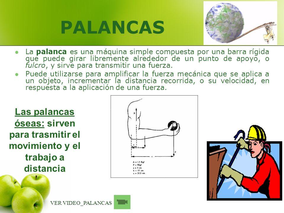 PALANCAS La palanca es una máquina simple compuesta por una barra rígida que puede girar libremente alrededor de un punto de apoyo, o fulcro, y sirve