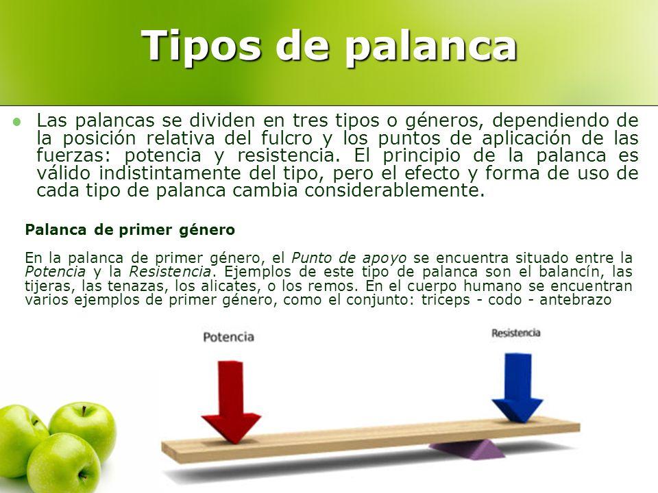 Tipos de palanca Las palancas se dividen en tres tipos o géneros, dependiendo de la posición relativa del fulcro y los puntos de aplicación de las fue
