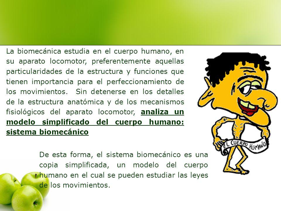 La biomecánica estudia en el cuerpo humano, en su aparato locomotor, preferentemente aquellas particularidades de la estructura y funciones que tienen