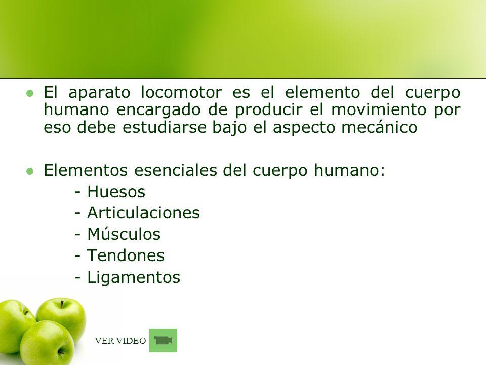 El aparato locomotor es el elemento del cuerpo humano encargado de producir el movimiento por eso debe estudiarse bajo el aspecto mecánico Elementos e