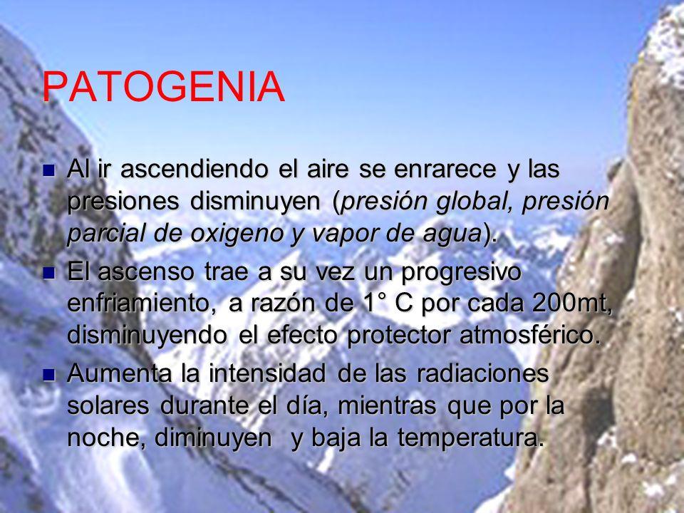 La aclimatación Se trata de un mecanismo tardío que tiende a mejorar la perfusión de oxigeno al favorecer su transporte.