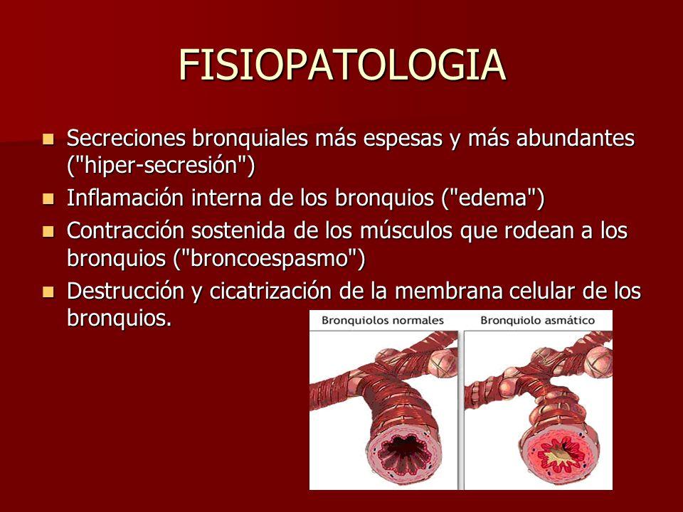 FISIOPATOLOGIA Secreciones bronquiales más espesas y más abundantes (