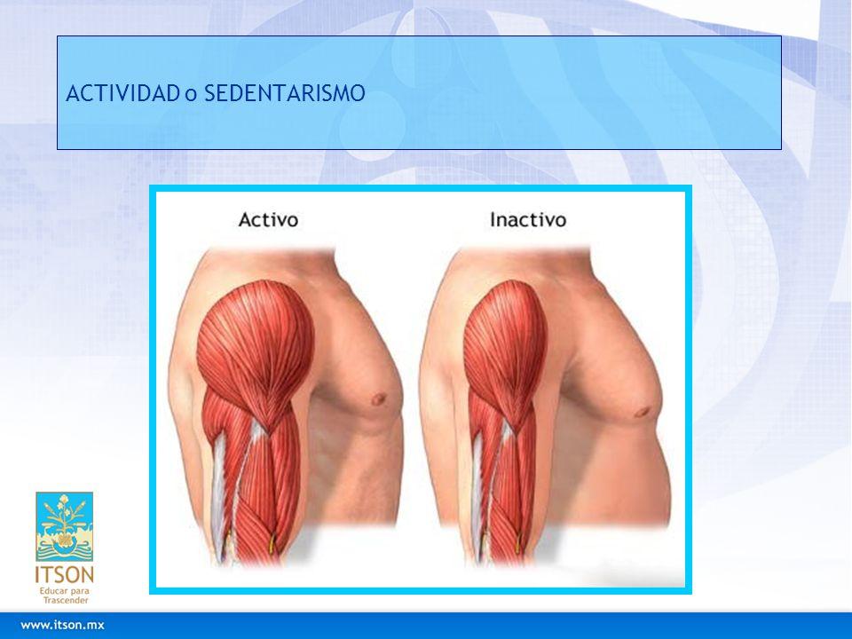 Fibromialgias Caracterizado por propagación de dolor en las articulaciones, los músculos, los tendones y otros tejidos blandos.