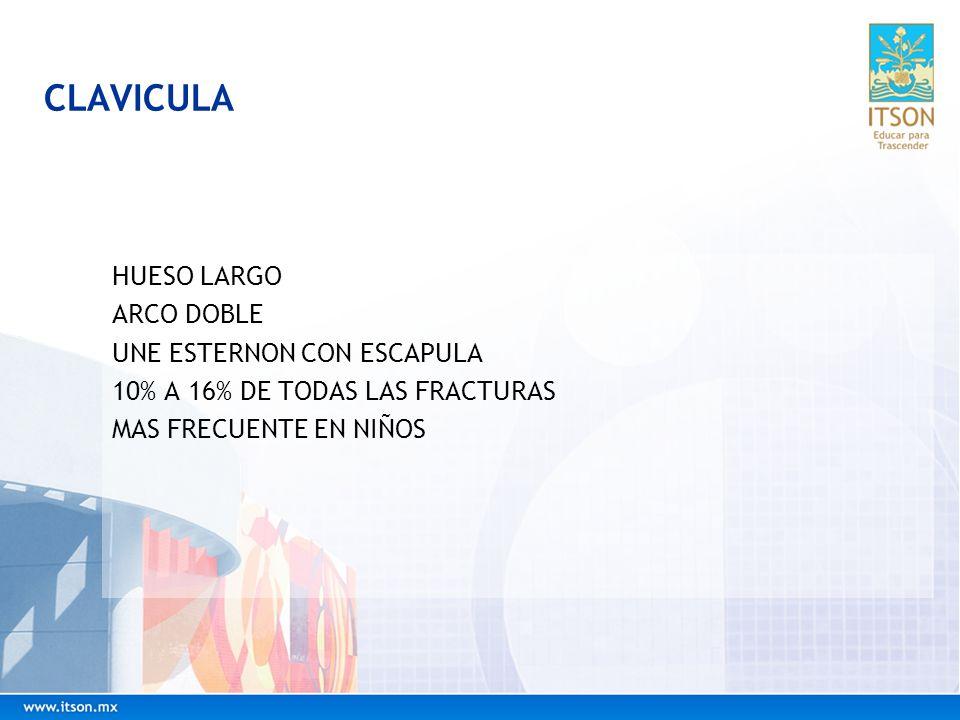 CLAVICULA HUESO LARGO ARCO DOBLE UNE ESTERNON CON ESCAPULA 10% A 16% DE TODAS LAS FRACTURAS MAS FRECUENTE EN NIÑOS
