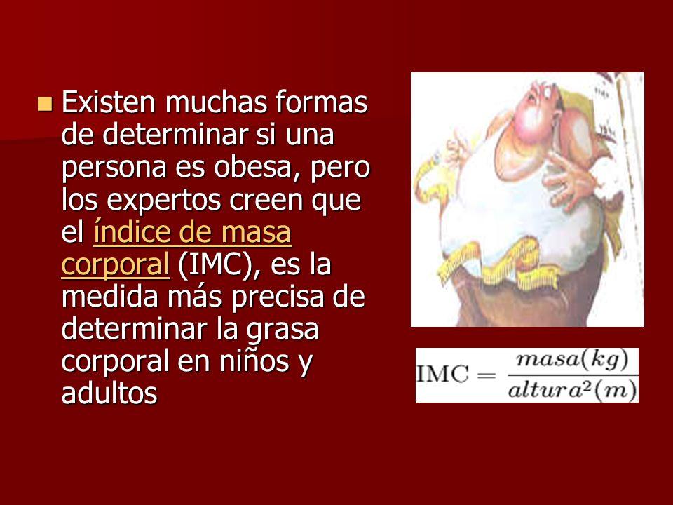 Existen muchas formas de determinar si una persona es obesa, pero los expertos creen que el índice de masa corporal (IMC), es la medida más precisa de