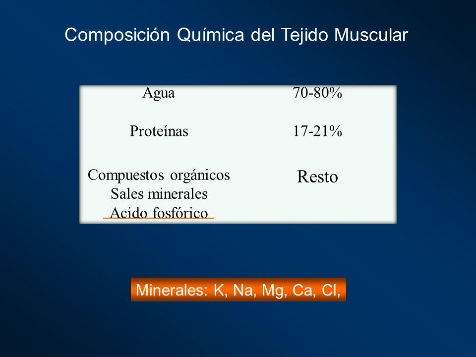 Composición Química del Tejido Muscular Minerales: K, Na, Mg, Ca, Cl,