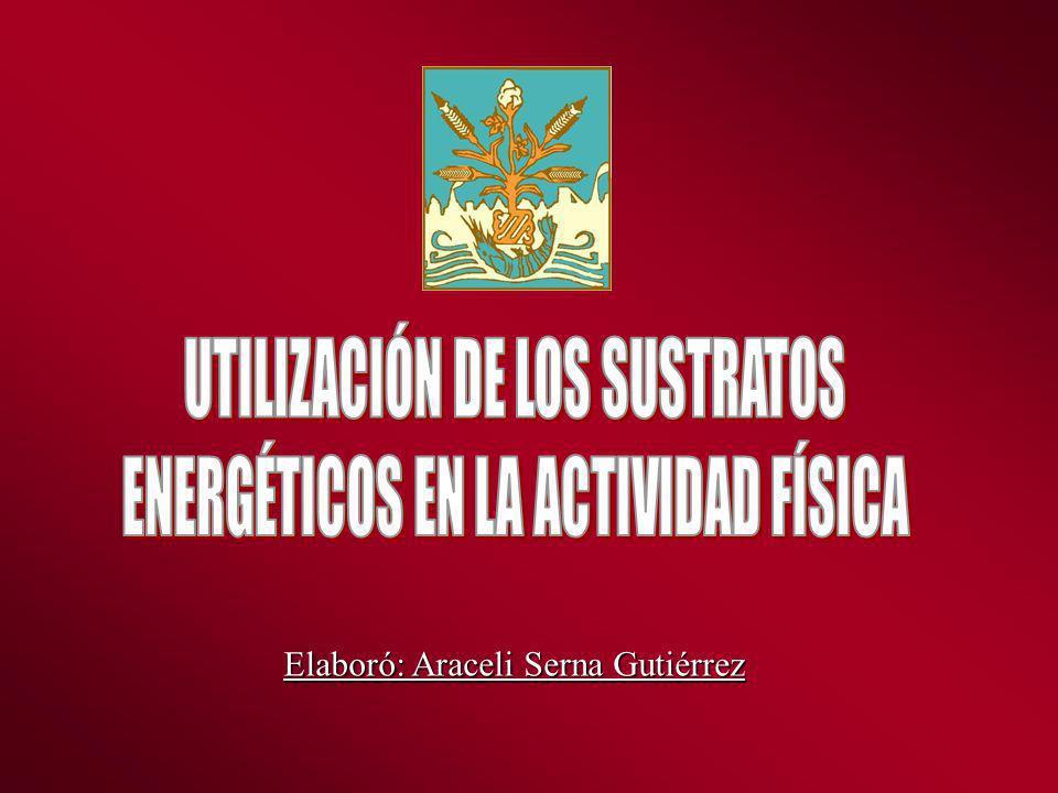 Movilización de los Recursos Energéticos Durante el Trabajo Muscular En que orden se van gastando los combustibles.