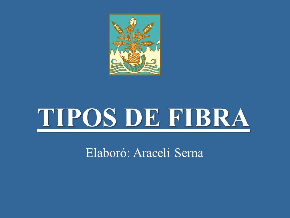 TIPOS DE FIBRA Elaboró: Araceli Serna