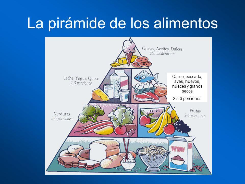 La pirámide de los alimentos Carne, pescado, aves, huevos, nueces y granos secos 2 a 3 porciones