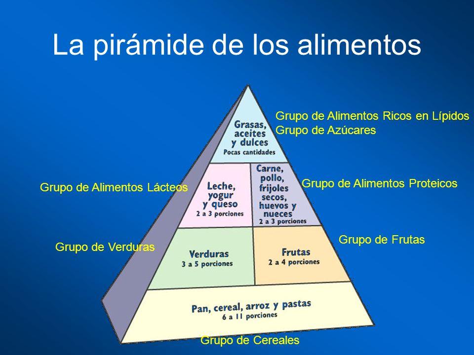 La pirámide de los alimentos Grupo de Cereales Grupo de Frutas Grupo de Verduras Grupo de Alimentos Proteicos Grupo de Alimentos Lácteos Grupo de Alim
