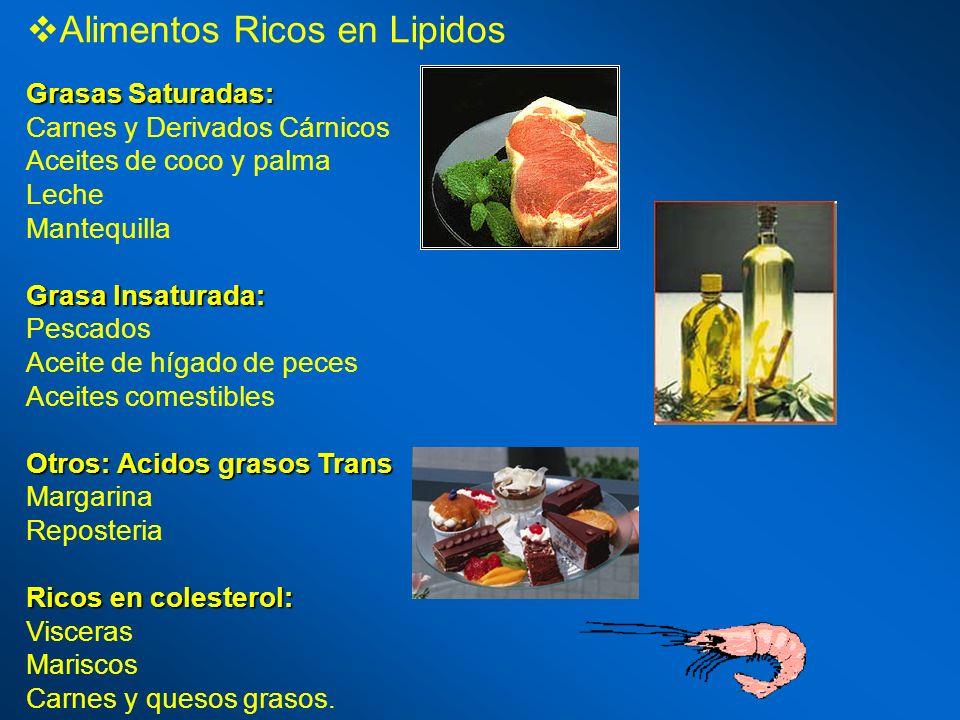 Alimentos Ricos en Lipidos Grasas Saturadas: Carnes y Derivados Cárnicos Aceites de coco y palma Leche Mantequilla Grasa Insaturada: Pescados Aceite d