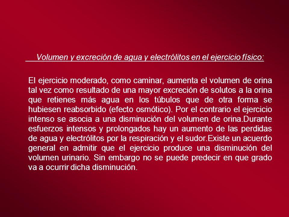 Volumen y excreción de agua y electrólitos en el ejercicio físico: El ejercicio moderado, como caminar, aumenta el volumen de orina tal vez como resul
