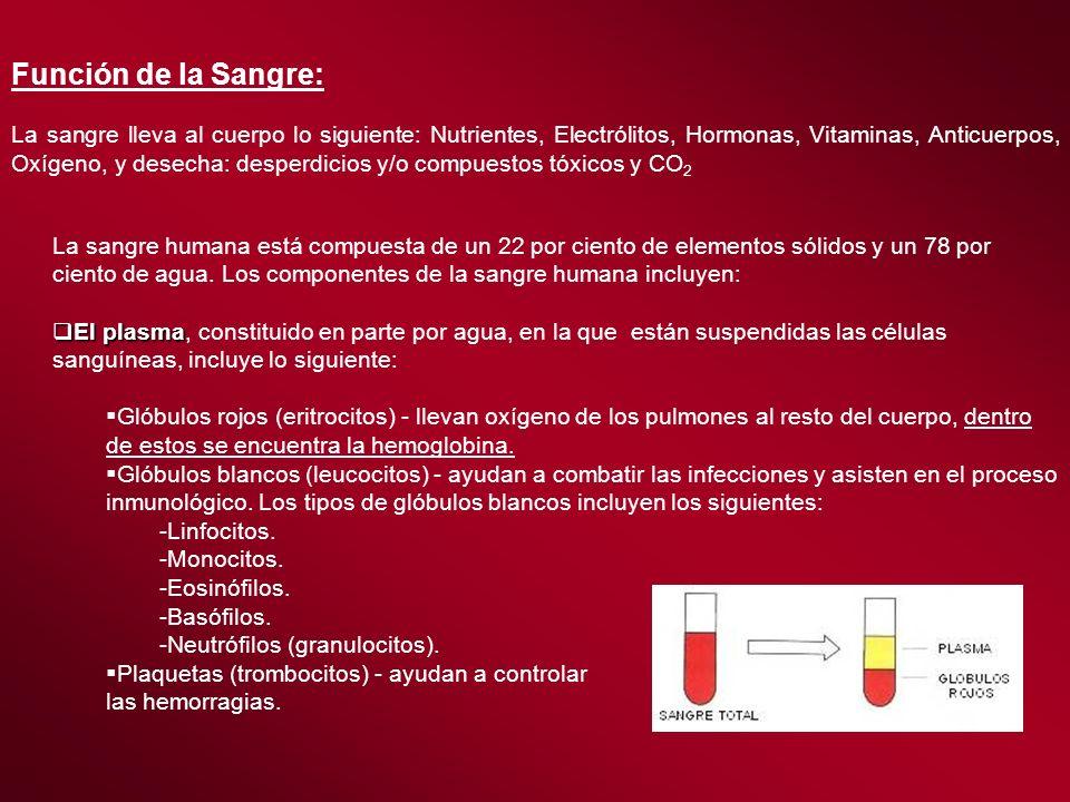 Función de la Sangre: La sangre lleva al cuerpo lo siguiente: Nutrientes, Electrólitos, Hormonas, Vitaminas, Anticuerpos, Oxígeno, y desecha: desperdi