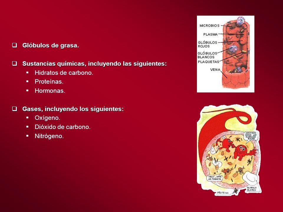 Glóbulos de grasa. Glóbulos de grasa. Sustancias químicas, incluyendo las siguientes: Sustancias químicas, incluyendo las siguientes: Hidratos de carb