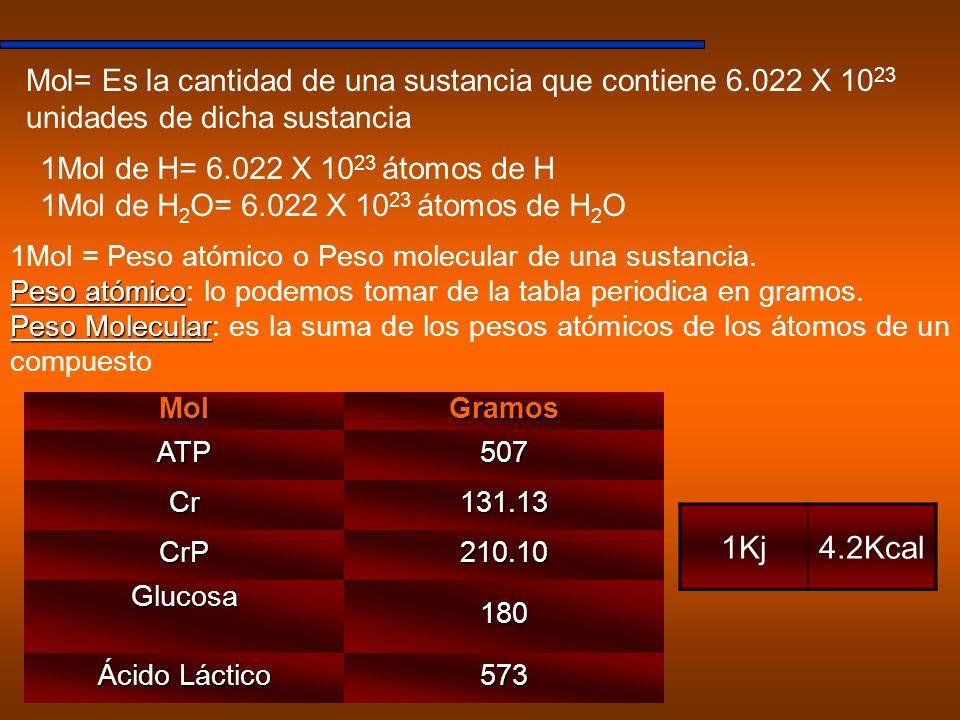 MolGramos ATP507 Cr131.13 CrP210.10 Glucosa180 Ácido Láctico 573 Mol= Es la cantidad de una sustancia que contiene 6.022 X 10 23 unidades de dicha sus