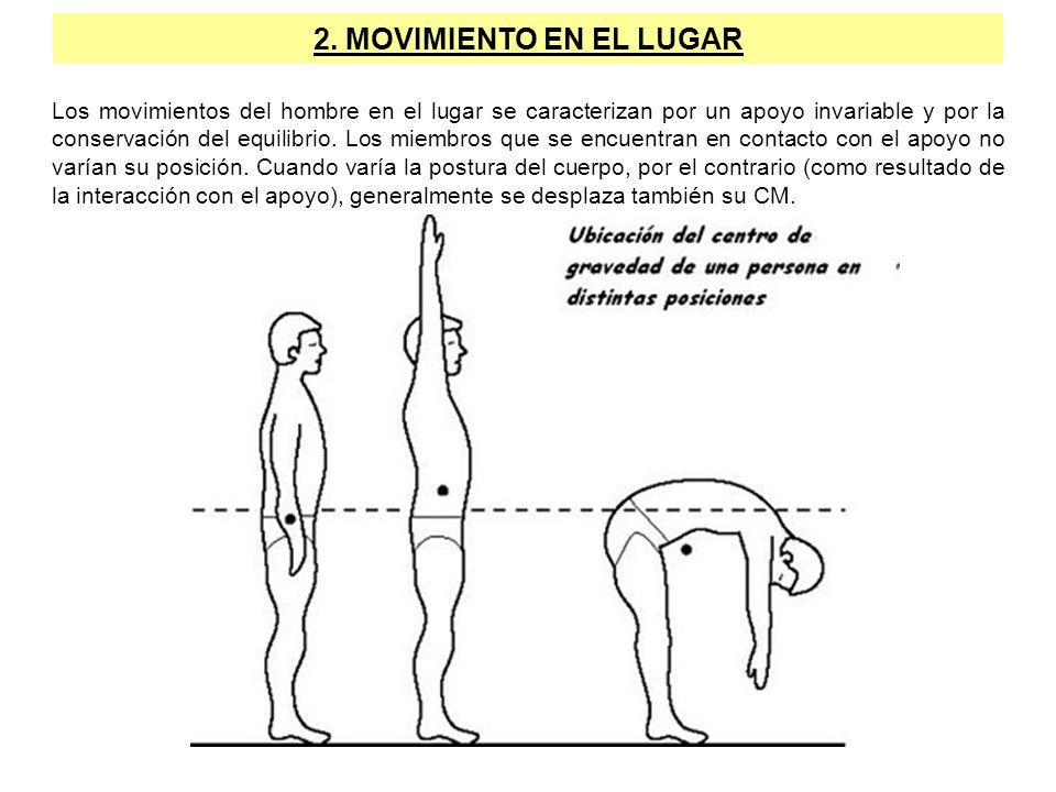 2. MOVIMIENTO EN EL LUGAR Los movimientos del hombre en el lugar se caracterizan por un apoyo invariable y por la conservación del equilibrio. Los mie