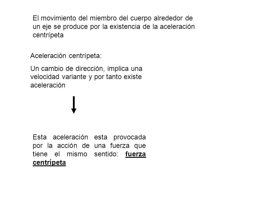 El movimiento del miembro del cuerpo alrededor de un eje se produce por la existencia de la aceleración centrípeta Aceleración centrípeta: Un cambio d