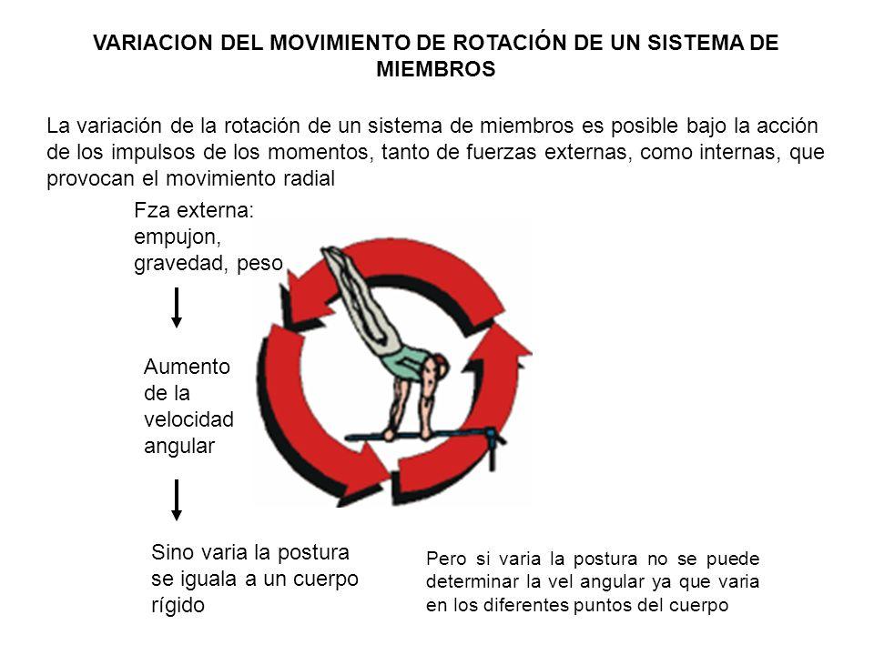 VARIACION DEL MOVIMIENTO DE ROTACIÓN DE UN SISTEMA DE MIEMBROS La variación de la rotación de un sistema de miembros es posible bajo la acción de los