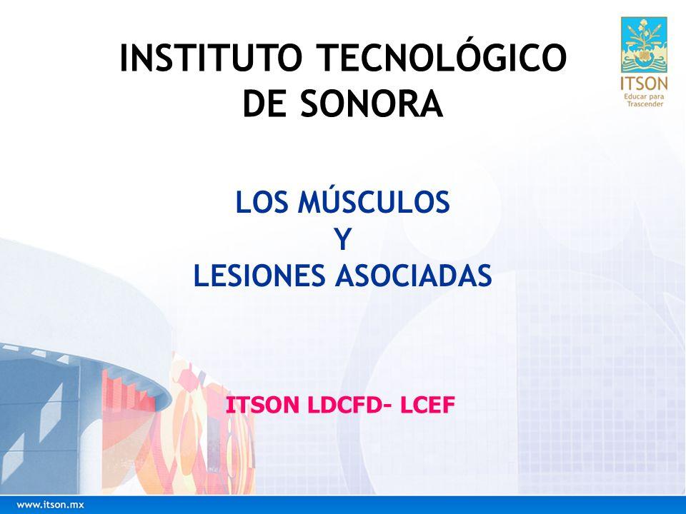 LOS MÚSCULOS Y LESIONES ASOCIADAS ITSON LDCFD- LCEF INSTITUTO TECNOLÓGICO DE SONORA