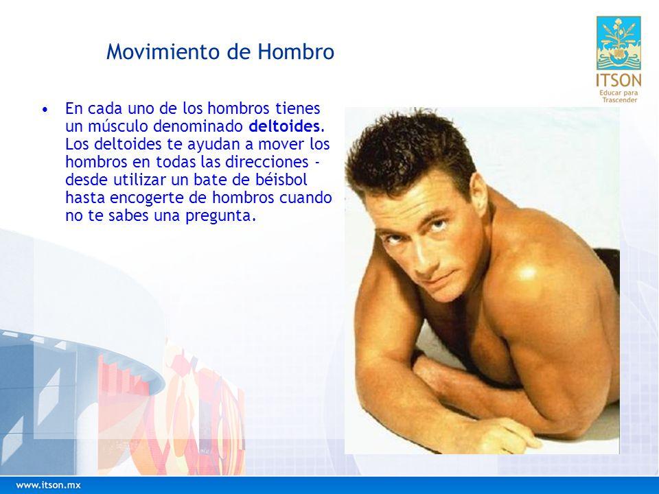 Movimiento de Hombro En cada uno de los hombros tienes un músculo denominado deltoides. Los deltoides te ayudan a mover los hombros en todas las direc