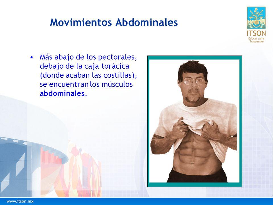 Movimientos Abdominales Más abajo de los pectorales, debajo de la caja torácica (donde acaban las costillas), se encuentran los músculos abdominales.