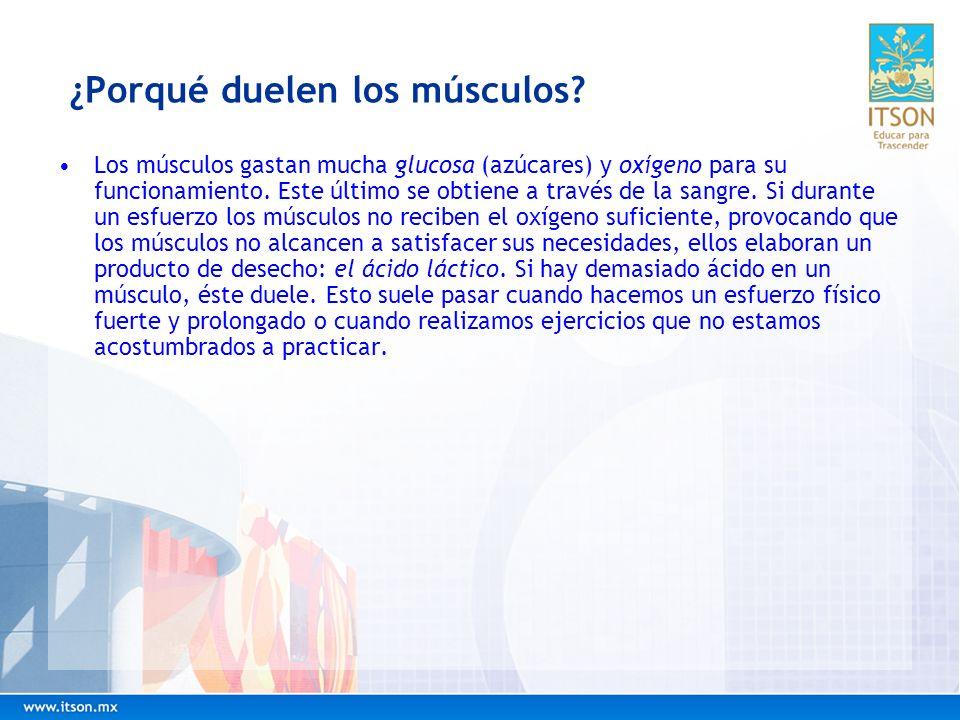 ¿Porqué duelen los músculos? Los músculos gastan mucha glucosa (azúcares) y oxígeno para su funcionamiento. Este último se obtiene a través de la sang