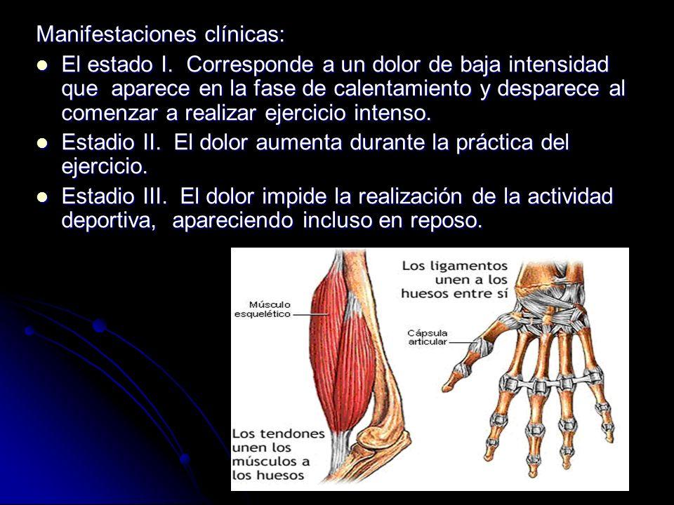 ESGINCE En la unión de todas las articulaciones del cuerpo existen los llamados ligamentos, una especie de cordones fibrosos que unen los huesos entre sí y dan estabilidad a las articulaciones.