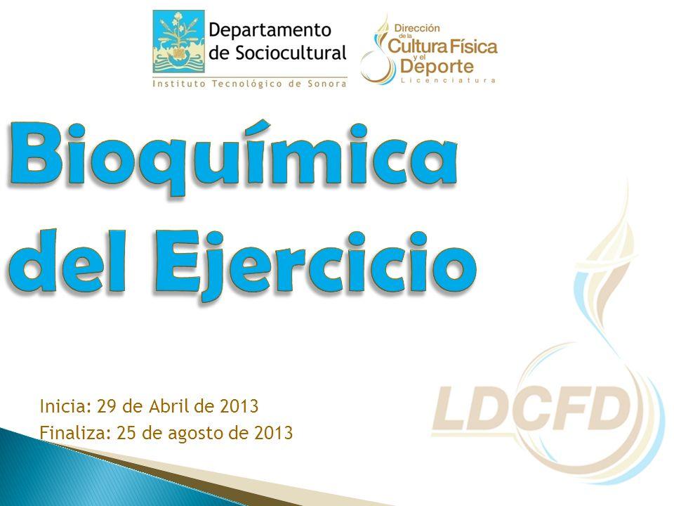 Inicia: 29 de Abril de 2013 Finaliza: 25 de agosto de 2013