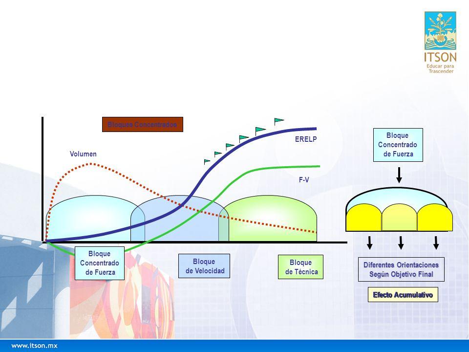 Bloque Concentrado de Fuerza Bloque de Velocidad Bloque de Técnica ERELP F-V Volumen Bloques Concentrados Bloque Concentrado de Fuerza Diferentes Orie