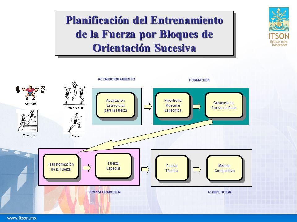 Planificación del Entrenamiento de la Fuerza por Bloques de Orientación Sucesiva Planificación del Entrenamiento de la Fuerza por Bloques de Orientaci