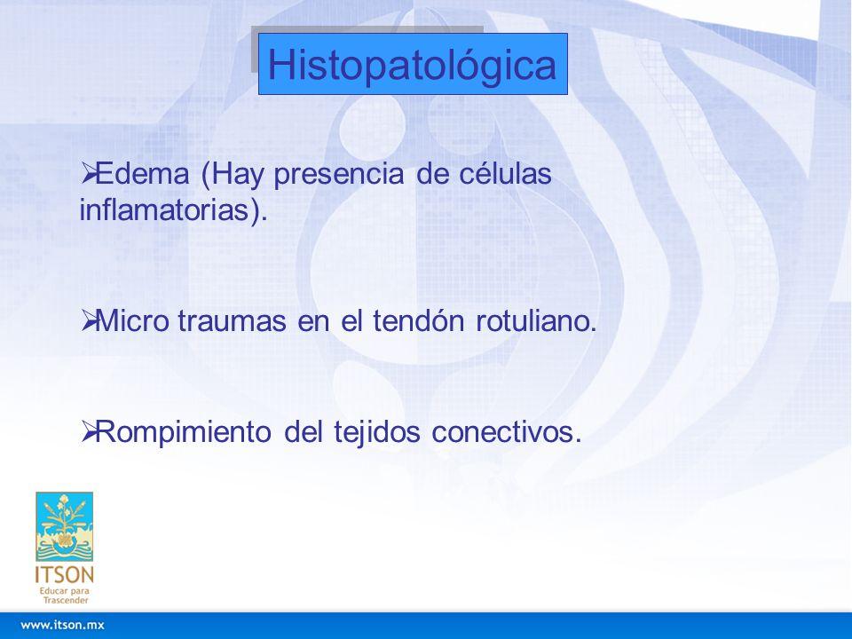 Histopatológica Edema (Hay presencia de células inflamatorias). Micro traumas en el tendón rotuliano. Rompimiento del tejidos conectivos.