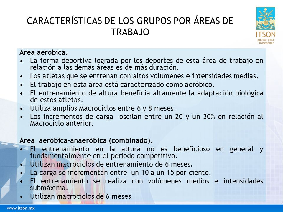 CARACTERÍSTICAS DE LOS GRUPOS POR ÁREAS DE TRABAJO Área anaeróbica.