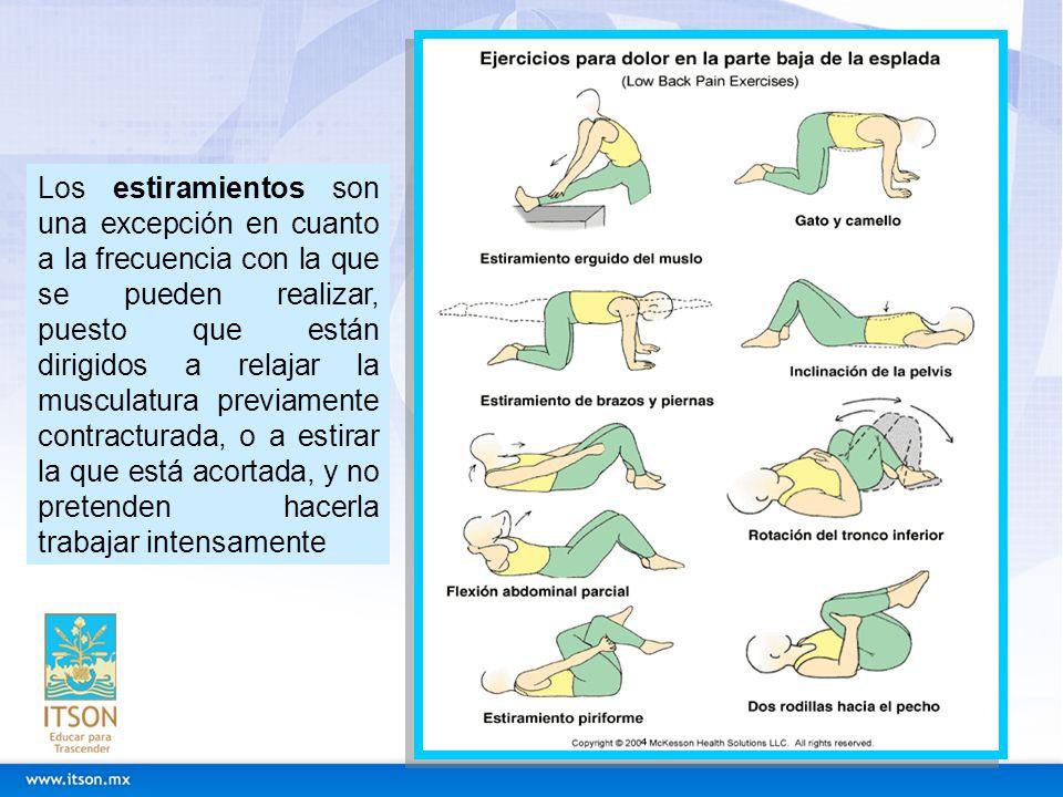 Rehabilitación de Espalda Existen unas escalas evaluadas científicamente para valorar de forma objetiva la intensidad del dolor y el grado de incapacidad que ocasiona el dolor de espalda