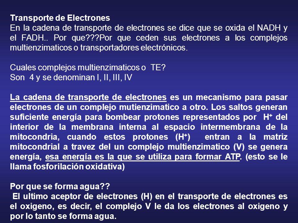 Transporte de Electrones En la cadena de transporte de electrones se dice que se oxida el NADH y el FADH.. Por que???Por que ceden sus electrones a lo