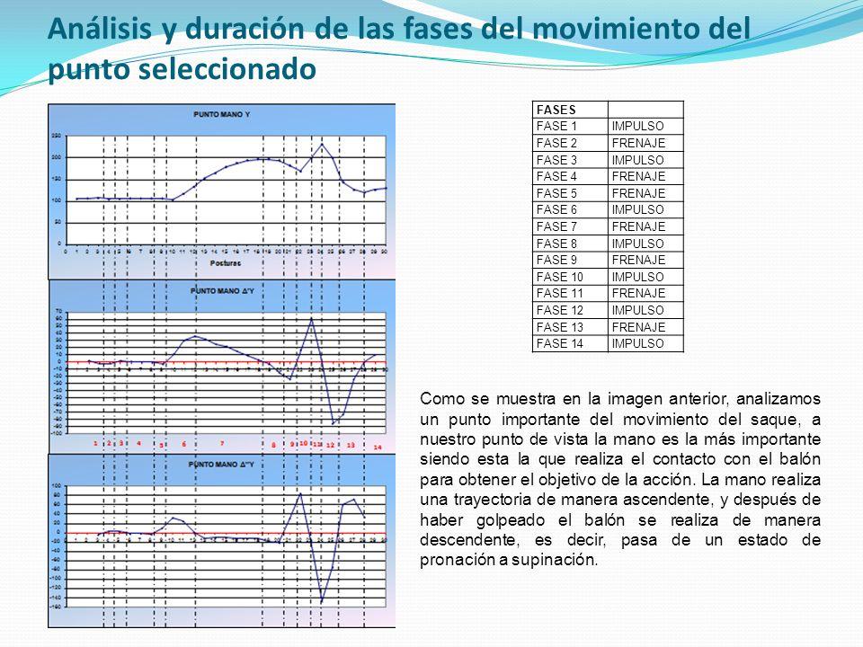 Análisis y duración de las fases del movimiento del punto seleccionado FASES FASE 1IMPULSO FASE 2FRENAJE FASE 3IMPULSO FASE 4FRENAJE FASE 5FRENAJE FAS