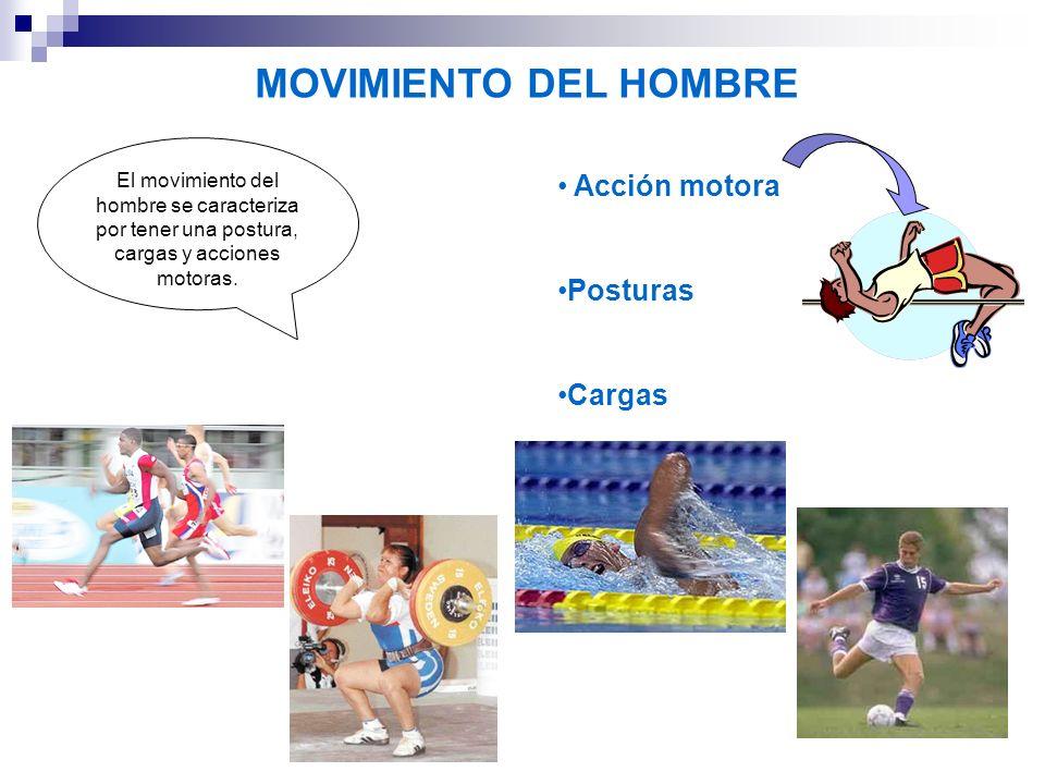 MOVIMIENTO DEL HOMBRE Acción motora Posturas Cargas El movimiento del hombre se caracteriza por tener una postura, cargas y acciones motoras.
