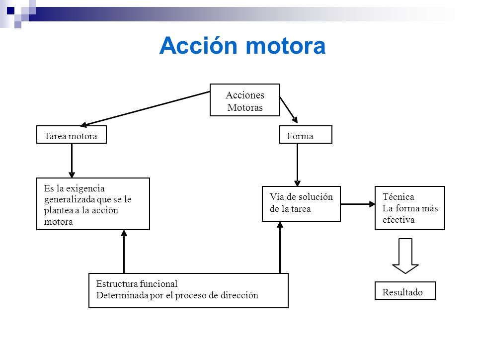 Acción motora Tarea motora Forma Es la exigencia generalizada que se le plantea a la acción motora Vía de solución de la tarea Técnica La forma más ef