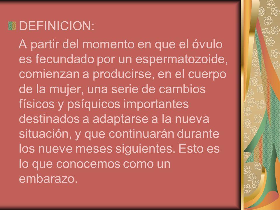 DEFINICION: A partir del momento en que el óvulo es fecundado por un espermatozoide, comienzan a producirse, en el cuerpo de la mujer, una serie de ca