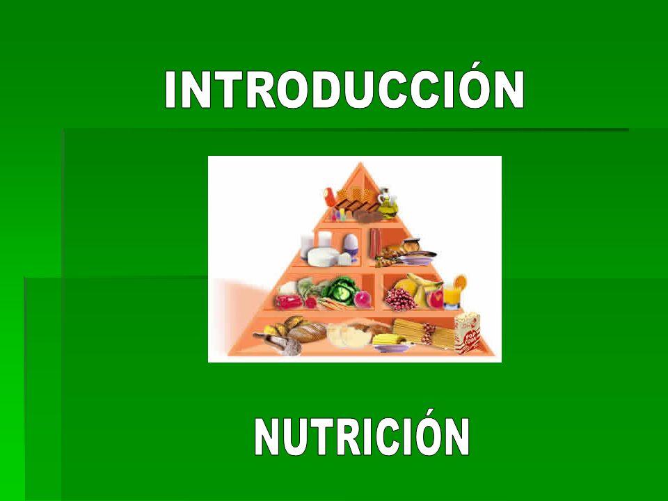 Funciones: Desde el punto de vista biológico se reconocen 3 funciones específicas que, como ya citamos en la clasificación, están determinadas por la composición química, o sea de acuerdo al tipo de nutriente predominante en el alimento.