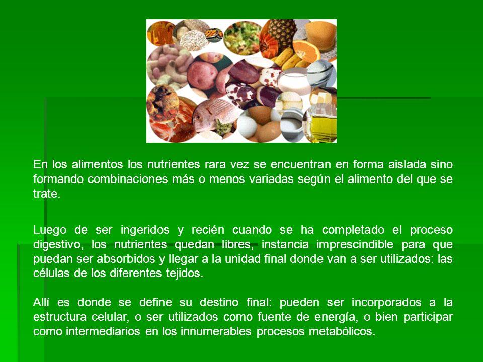 En los alimentos los nutrientes rara vez se encuentran en forma aislada sino formando combinaciones más o menos variadas según el alimento del que se